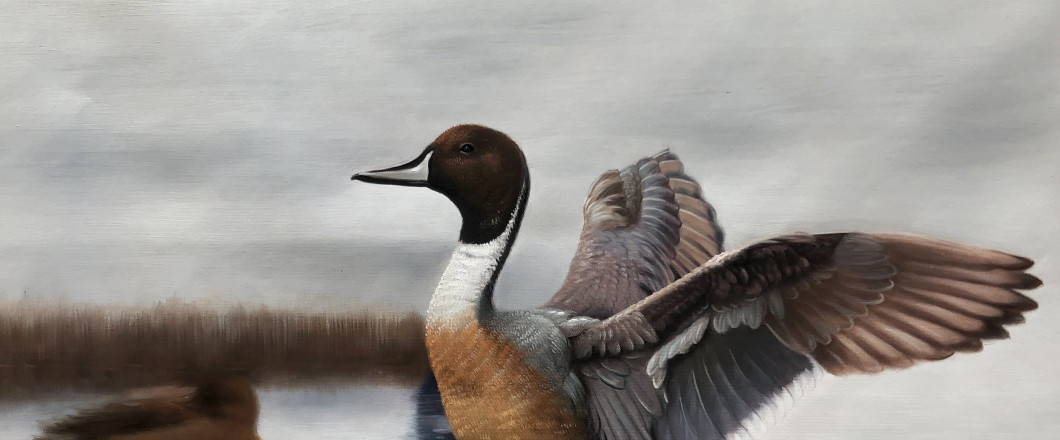 Check Out Our Ducks Unlimited Paintings